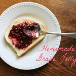 Homemade Grape Jelly {Gypsy Magpie}