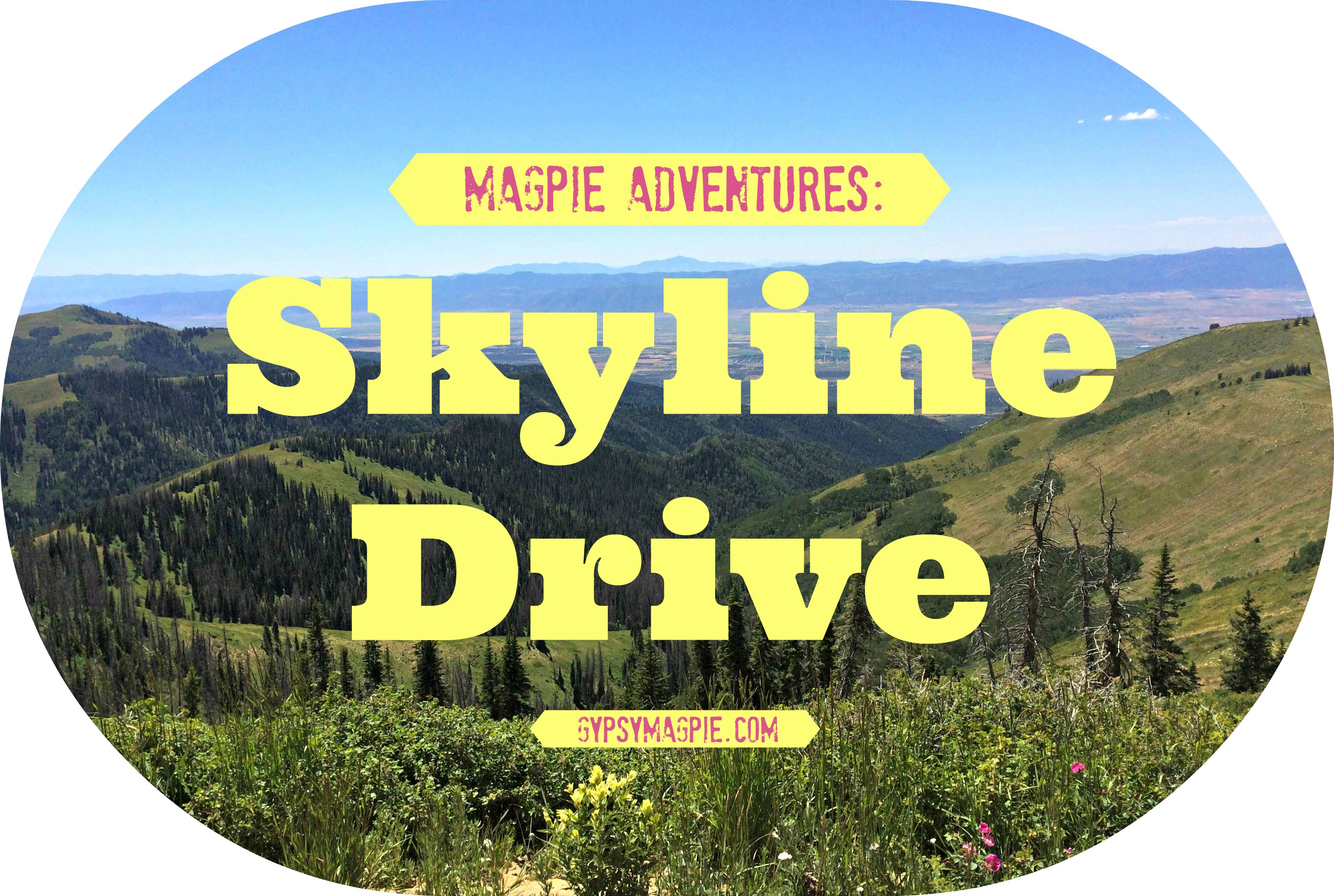 Looking for a fun Utah outdoor adventure for your family this fall? Skyline Drive and the Arapeen ATV Trail System are calling your name! {Gypsy Magpie}