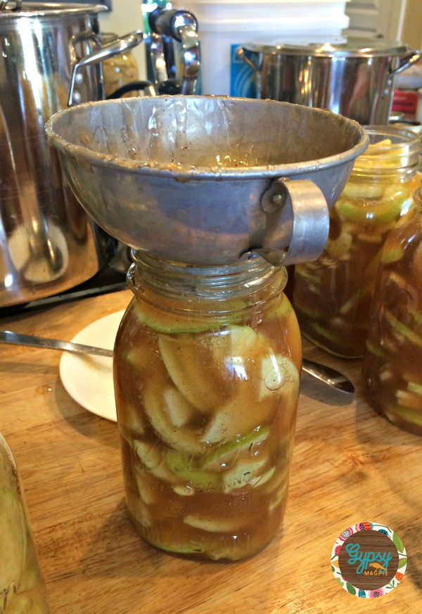Great Aunt Arzley's Apple Pie Filling {Gypsy Magpie}