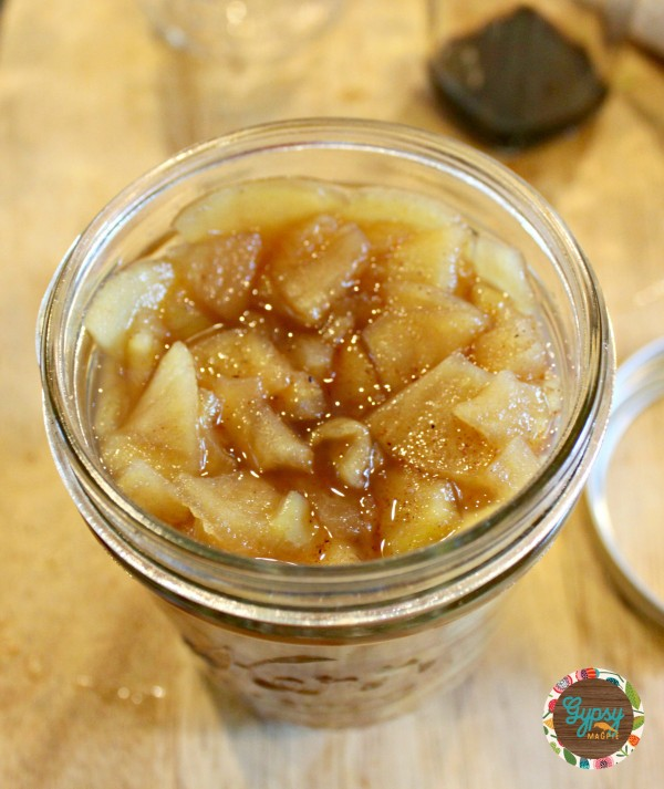 Chunky Spiced Applesauce {Gypsy Magpie}
