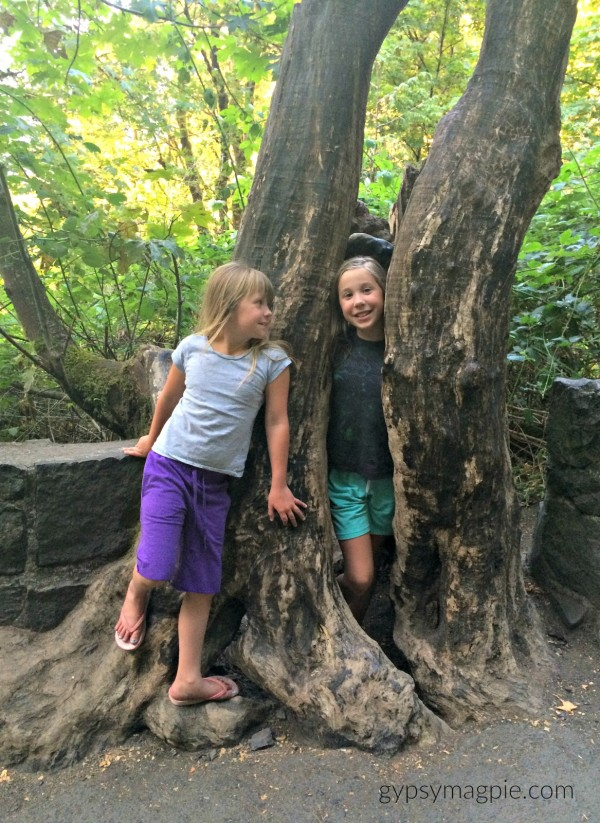 The trail to Multnomah Falls is green and covered with trees! My girls loved exploring the little path. If you have kids, you have to stop there! | Gypsy Magpie