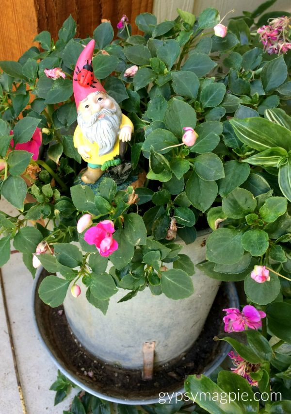 Sharing where I hunt for fairy garden treasures, like this roaming gnome! So much family fun! | Gypsy Magpie