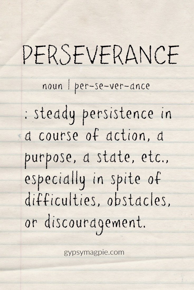 Perseverance: steady persistence in a course of action, a purpose, a state, etc., especially in spite of difficulties, obstacles, or discouragement | Gypsy Magpie