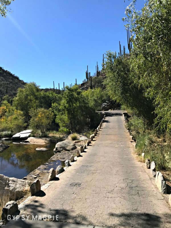 Cool old bridge over the creek in Sabino Canyon near Tucson, Arizona | Gypsy Magpie