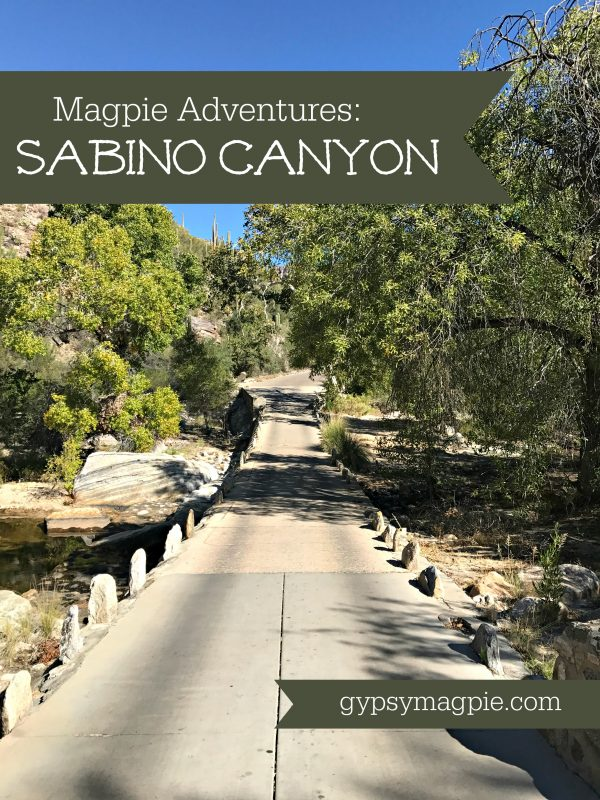Sabino Canyon... great little day trip adventure that's perfect for families! | Gypsy Magpie