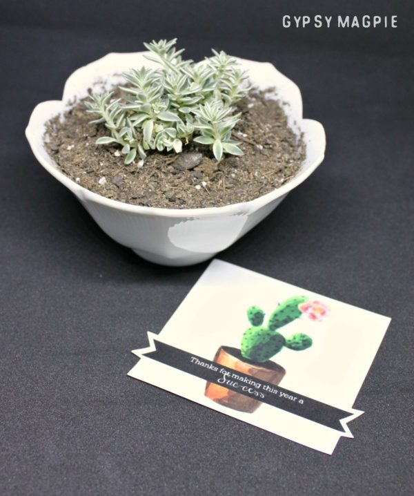 Simple and inexpensive teacher gift!