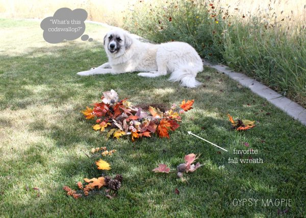 Muggle Mutt and the fall wreath fiasco | Gypsy Magpie