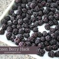 This simple frozen berry hack will saves time and cash!   Gypsy Magpie