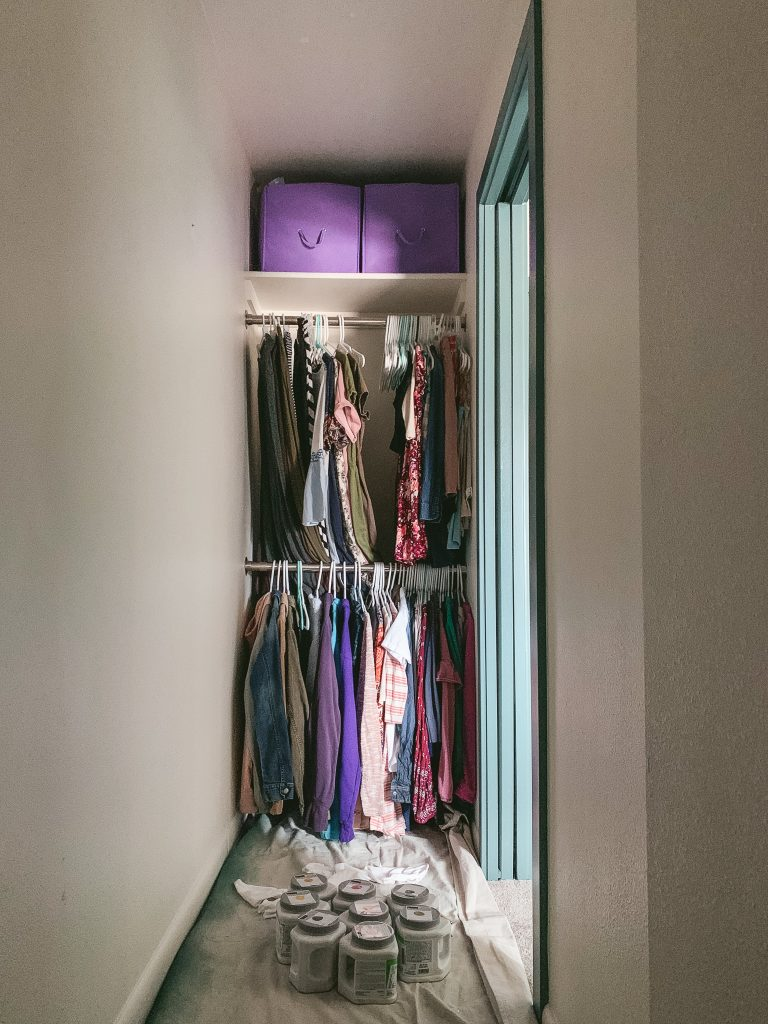 Closet BEFORE floral mural wall | gypsy magpie